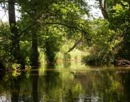 Spływ - Rzeka Marózka